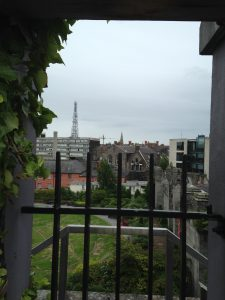 From the roof garden of the Chester Beatty Library.